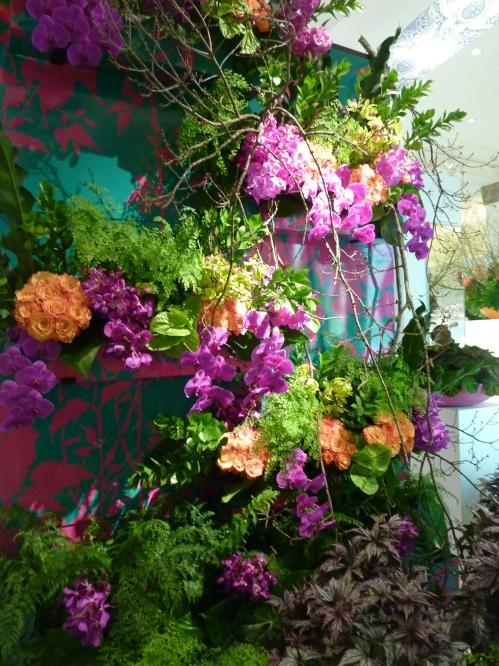 David Jones Flower Show
