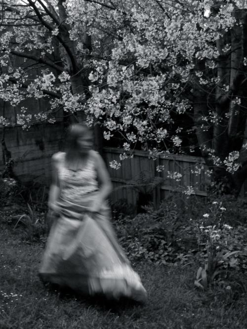 © Sandra Alcorn 2013