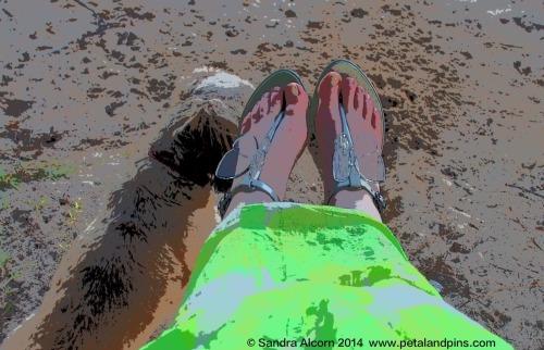Sitting on Picnic Bay Beach Magnetic Island