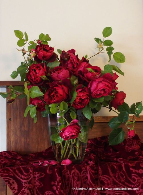 Roses on the Mantlepiece