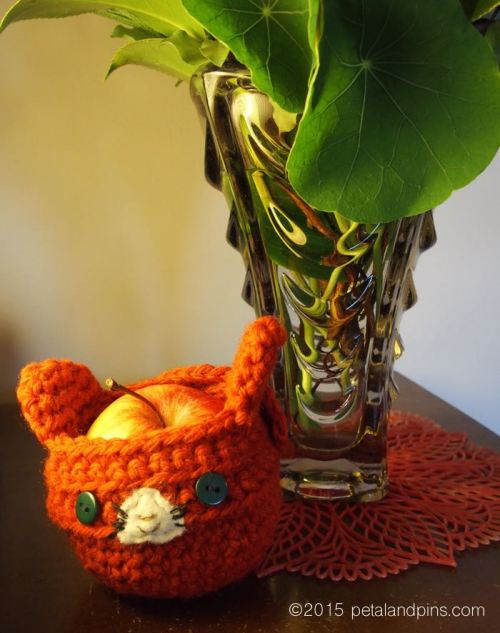 apple cosy from Smithton