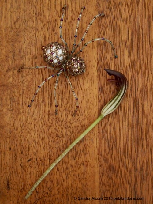 beaded spider & cobra head lily