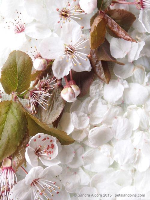 blossom dress detail