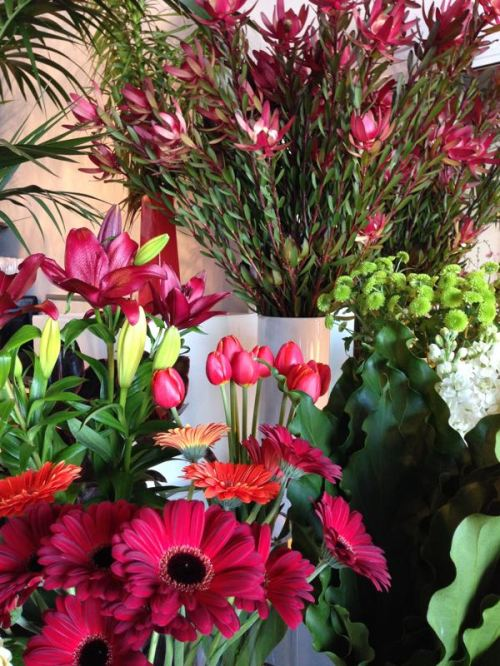flowers at Beautiful flowers and gifts