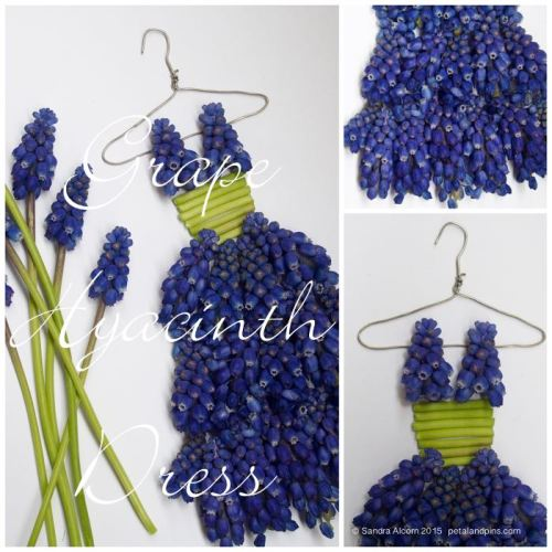 petal & pins grape hyacinth dress