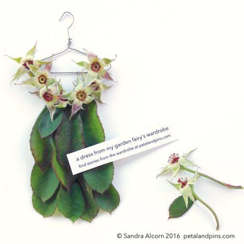 rose hip hankerchief hem dress by petal and pins