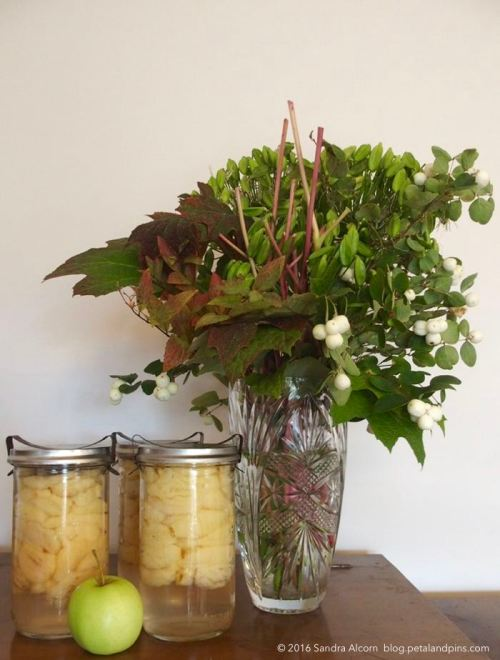 preserved apples and autumn vase