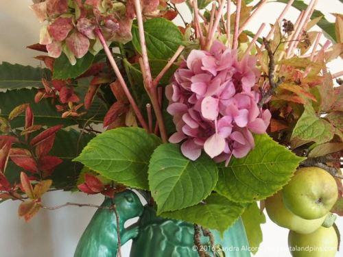 hydrangeas and autumn foliage