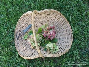 vintage flower basket with hydrangeas