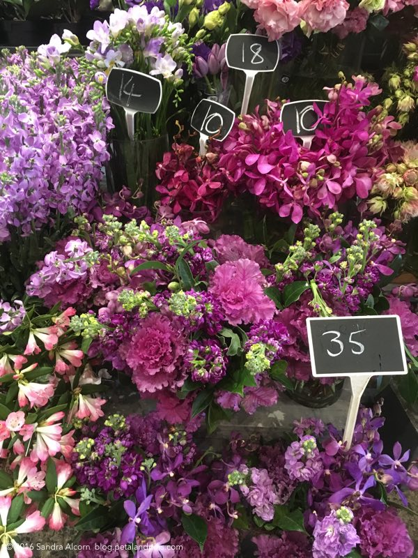 pinks and purples at Flowers Vasette