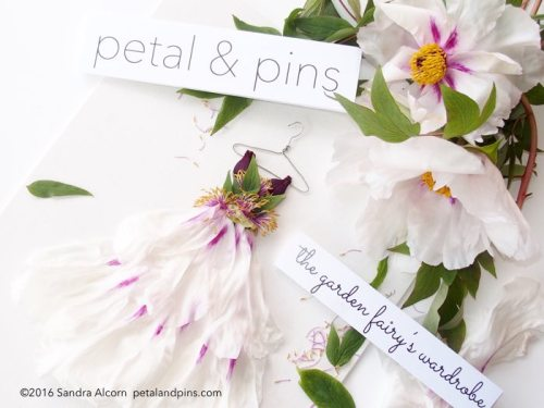 petal & pins peony dress