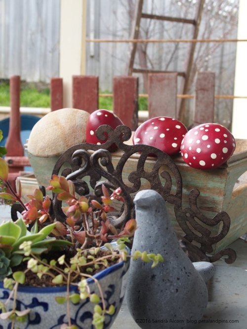 birds & toadstools