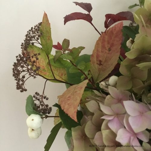 snow-berries-and-hydrangeas