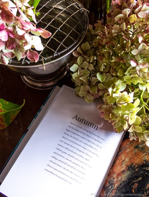 autumn hydrangeas, antique silver rose bowl and cookbook
